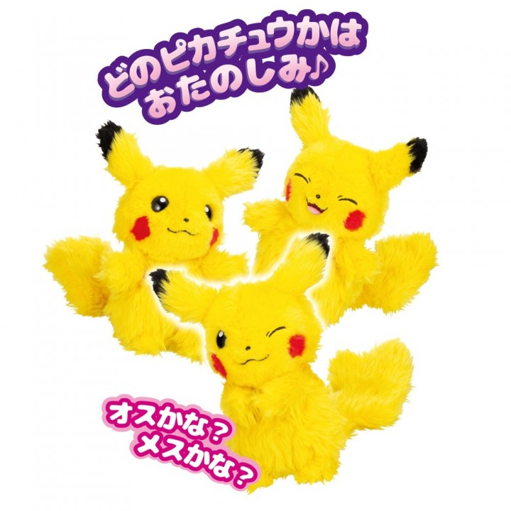 WHO are YOU? ポケモン 再販 在庫あり 通販 購入